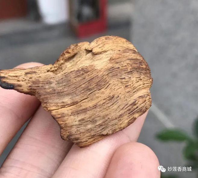 沉香介绍:越南富森红土沉香是什么鬼?怎么会那么吸引人