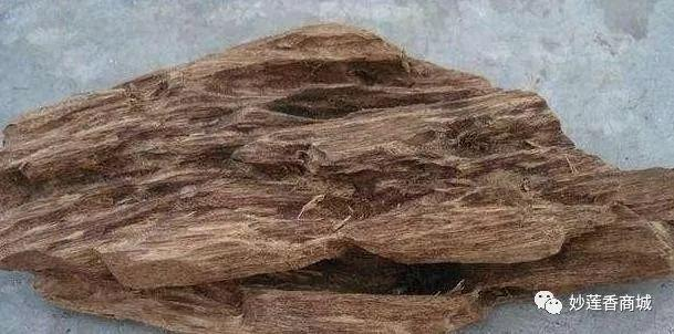 沉香常识:沉香跟沉香木一样吗?沉香跟沉香木的差别有多大?